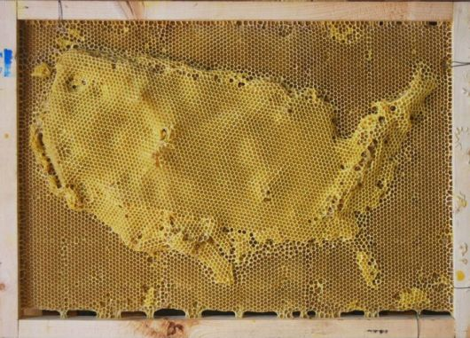 Beautiful Artworks Of Beeswax