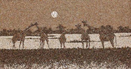 Creative Mosaics Of Sand And Shells